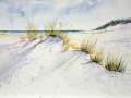 Ostsee Dünen