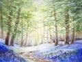 Blauglöckchenwald