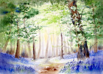 20130407_Bluebell Woods 4_Angebote